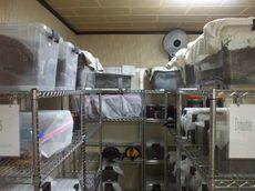 発酵マット製作